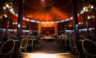 Madame Zingara Extends Stay