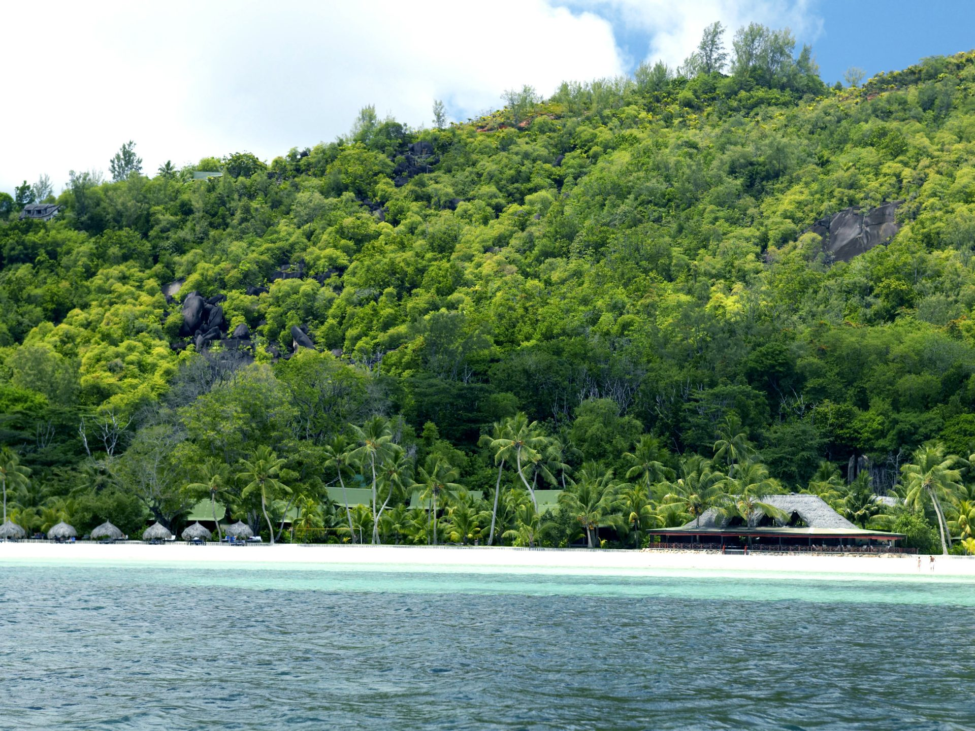 View Of A Beach With Tropical Vegetation
