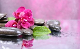 Spa pebbles and pink flowers