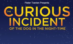 The Curious Incident Of The Dog In The Night Time poster at Pieter Toerien, Montecasino