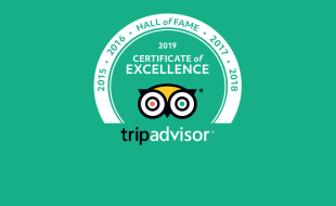 Certificate of Excellence Hall of Fame 2019